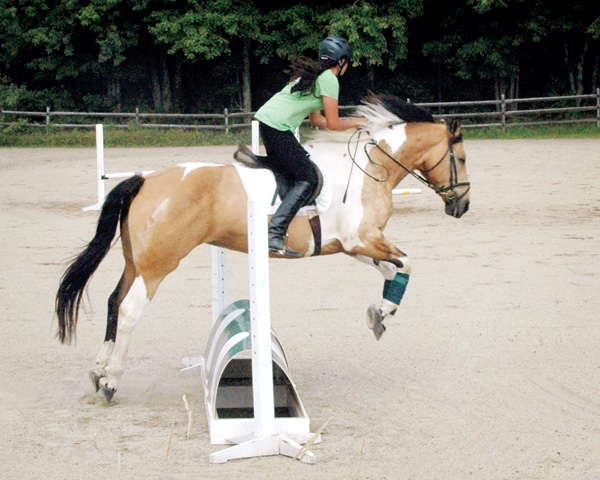 photo of a jumping lesson