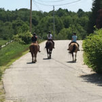 photo of three students riding horses down the road
