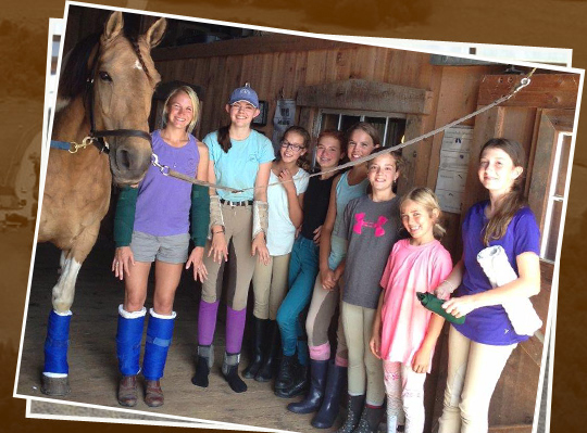 Home Carlisle Academy Integrative Equine Therapy Amp Sports