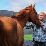 A photo of a veteran petting a horse.