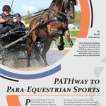 Pathway to Para-Equestrian Sports article photo