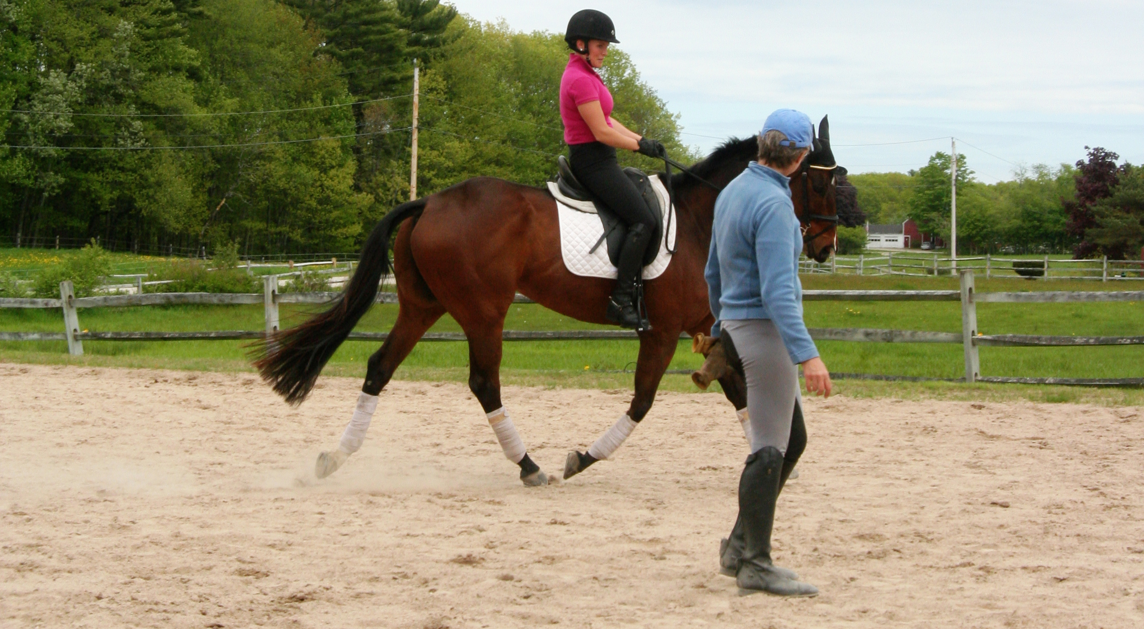 photo of dressage rider and instructor