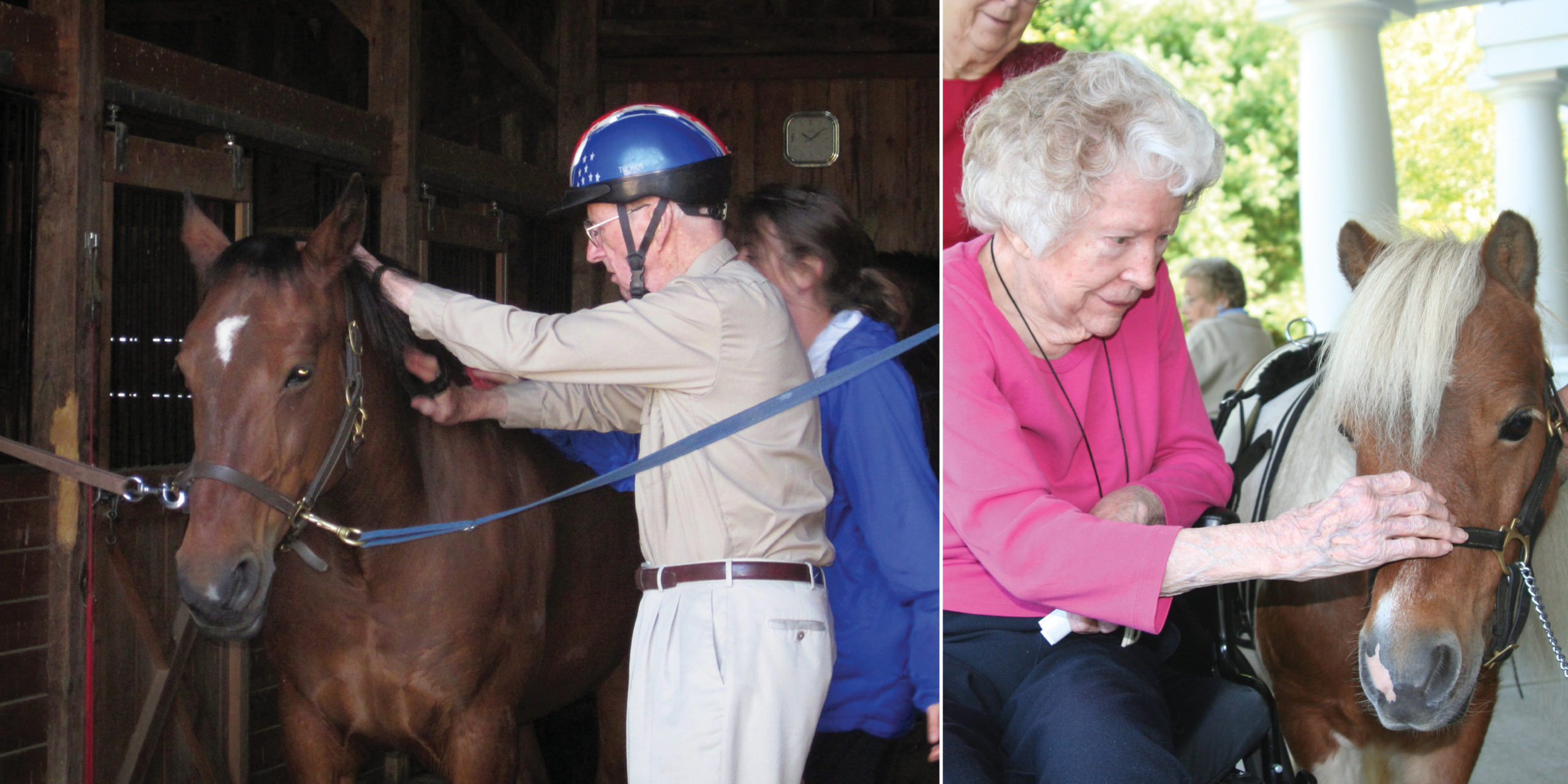 photo of elderly people grooming horses