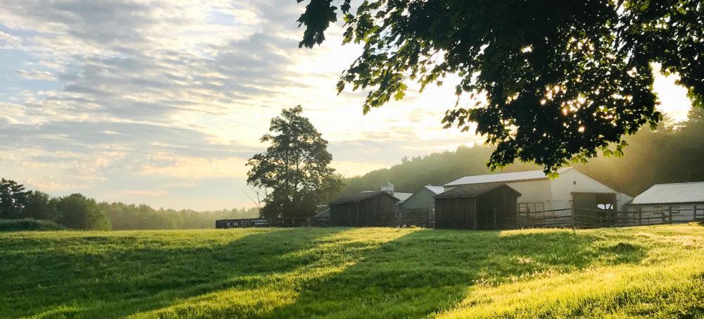 Photo of sunlight shining on farm buildings