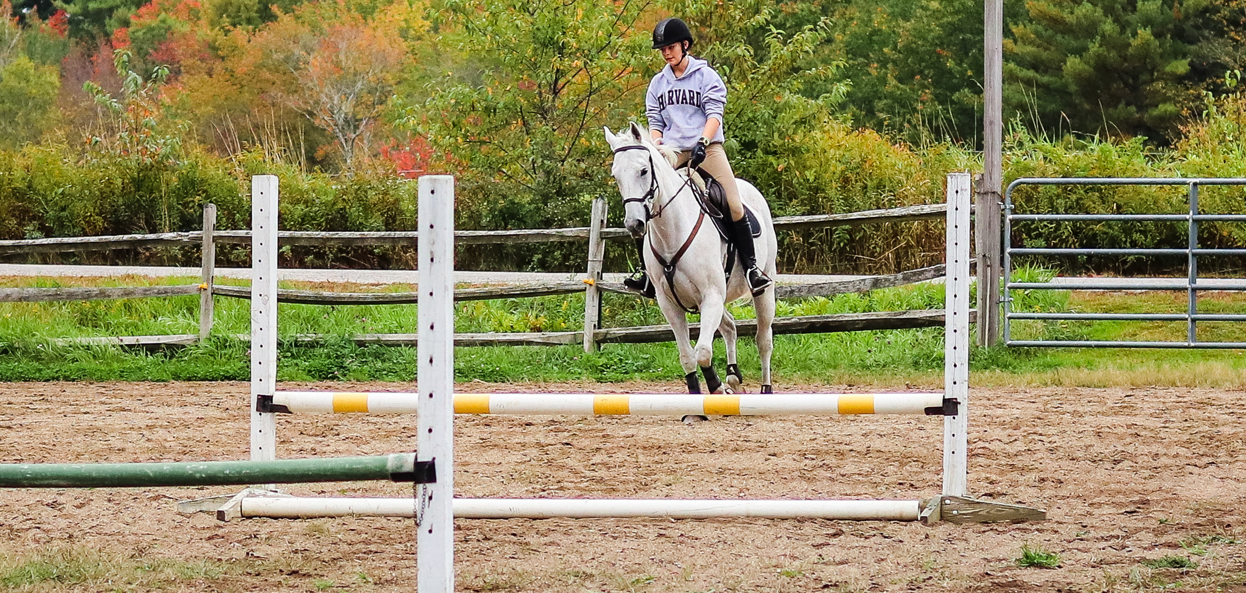 Equestrian Center Prices